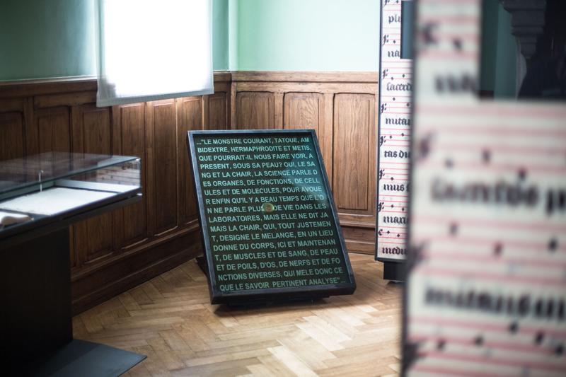 orlan_ma-chair-le-texte-et-les-langages-grand-reliquaire-francais_1993