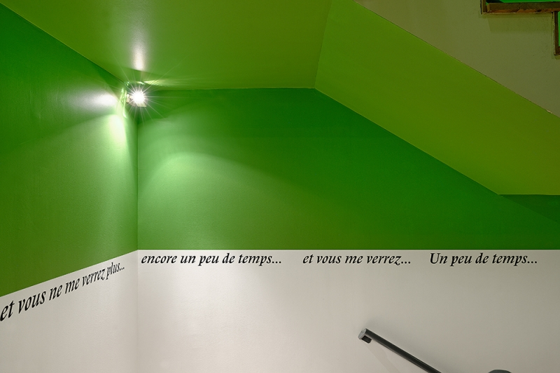 2016-MACLyon_Bonheur_ORLAN_Encoreunpeudetemps6