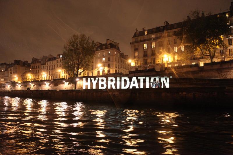 boeuf-sur-la-langue_HYBRIDATION